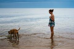 Agua potable de observación del perro de la chica joven por el mar fotos de archivo libres de regalías