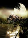 Agua potable del tigre debajo de la luna stock de ilustración