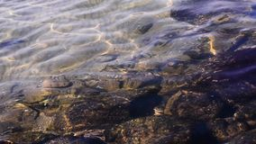 Agua potable en un lago de la montaña metrajes