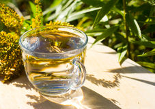 Agua pura en vidrio Fotografía de archivo libre de regalías