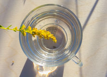 Agua pura en vidrio Fotos de archivo