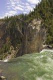 Agua que conecta en cascada durante las caídas Fotografía de archivo libre de regalías