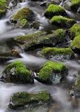 Agua que fluye alrededor de rocas cubiertas de musgo imagen de archivo