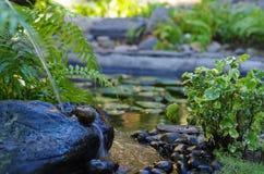 Agua que fluye en las piedras foto de archivo