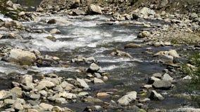 Agua que fluye pacífico metrajes