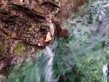 Agua que fluye sobre roca en Emerald Pool Sra Morakot en la provincia de Krabi, Tailandia imagen de archivo