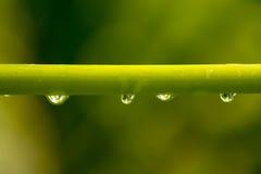 Agua que hace la lente Imagenes de archivo