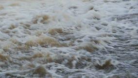 Agua rodante del flujo almacen de video