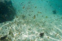 Agua sucia del océano Fotos de archivo libres de regalías