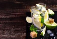 Agua tónica fresca en el vidrio Con el limón, la menta y la cal Imagen de archivo
