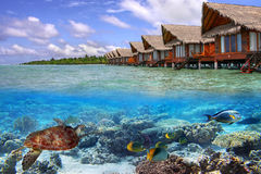 Agua tropical de Maldivas Fotos de archivo
