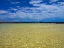 Agua verde en una bahía reservada cerca del océano Costa de la roca volcánica negra Resplandor en el agua Ondas de la brisa Vient Fotografía de archivo libre de regalías