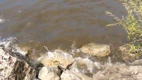 Agua, viento, tormenta, ondas, tormenta, sucia, río, piedras, canto rodado, fuerza, amenazando, haciendo espuma, mún tiempo almacen de metraje de vídeo