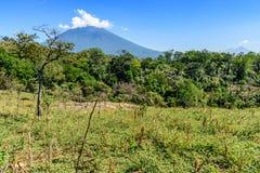 Agua volcano & countryside stock photos