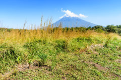 Agua volcano & grassland. Rough grassland with woodland & Agua volcano in background in Escuintla, Guatemala, Central America stock photos