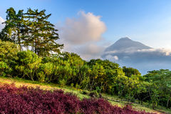 Agua volcano view, Antigua, Guatemala. View of Agua volcano outside Spanish colonial town & UNESCO World Heritage Site of Antigua in Panchoy Valley, Guatemala stock images