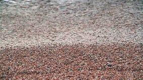 Agua y arena almacen de video