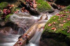 Agua y colinas verdes en la velocidad de obturador más lenta foto de archivo