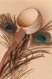 Agua y pavo real de la cucharón Fotos de archivo libres de regalías