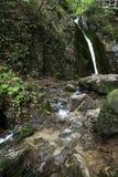 Agua y roca de manatial cristalinas Fotos de archivo libres de regalías
