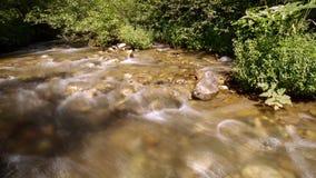 Agua y rocas de la corriente metrajes