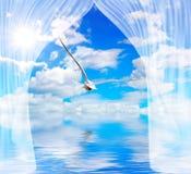 Agua y sol de la gaviota a través de la cortina imagen de archivo