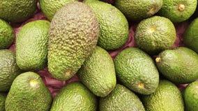 Aguacate-Avocado natürlich Stockbild