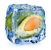 Aguacate en cubo de hielo Imagenes de archivo