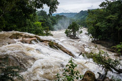 Agual Azul, überschwemmter Fluss, Vorsichtwasserbewegung bei Chiapas, trav Lizenzfreie Stockfotos
