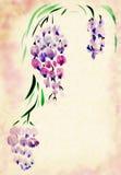 Aguarelas pintadas glicínias ilustração stock