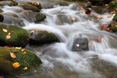 Aguas ahumadas de la montaña Foto de archivo libre de regalías