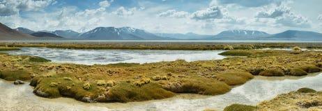 Aguas calientes salt lake in Atacama region Royalty Free Stock Photo