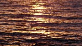 Aguas de mar de oro en la salida del sol almacen de metraje de vídeo