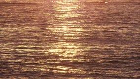 Aguas de mar que agitan de oro en la salida del sol almacen de video