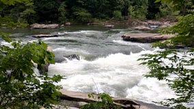 Aguas del parque de estado del lago roaring Tygart metrajes