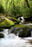 Aguas del rastro del motor de la bifurcación del rugido en las montañas ahumadas Foto de archivo