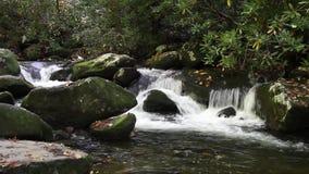 Aguas del rastro del motor de la bifurcación del rugido en las montañas ahumadas metrajes