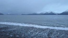 Aguas frías de Alaska almacen de video