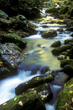 Aguas lentas, blancas de las grandes montañas ahumadas. Fotos de archivo