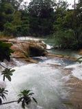Aguas salvajes del Agua Azul, México Foto de archivo libre de regalías