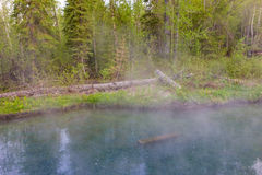 Aguas termales de Liard en Canadá septentrional Imagenes de archivo