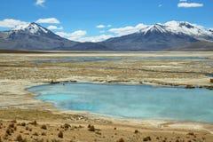Aguas termales de Polloquere en el parque nacional de Salar de Surire Fotografía de archivo