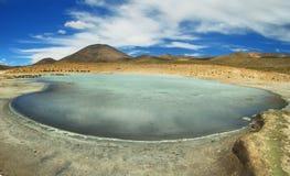 Aguas termales de Polloquere en el parque nacional de Salar de Surire Fotografía de archivo libre de regalías