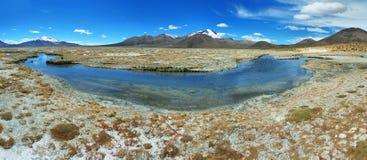 Aguas termales de Polloquere en el parque nacional de Salar de Surire Foto de archivo