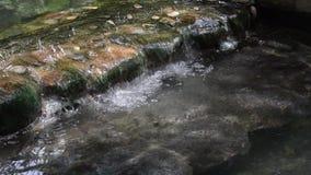 Aguas termales del agua del géiser de Sankampang en Chiangmai, Tailandia almacen de metraje de vídeo