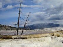 Aguas termales gigantescas Fotos de archivo