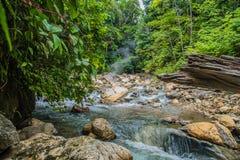 Aguas termales hermosas en la selva Fotos de archivo libres de regalías