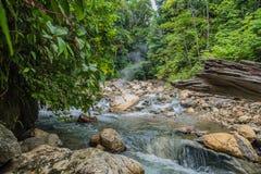 Aguas termales hermosas en la selva Fotografía de archivo