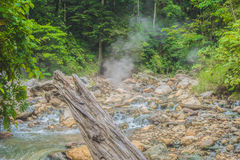Aguas termales hermosas en la selva Fotos de archivo