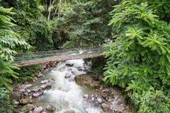 Aguas termales Poring, Sabah, Borneo Malasia Fotografía de archivo